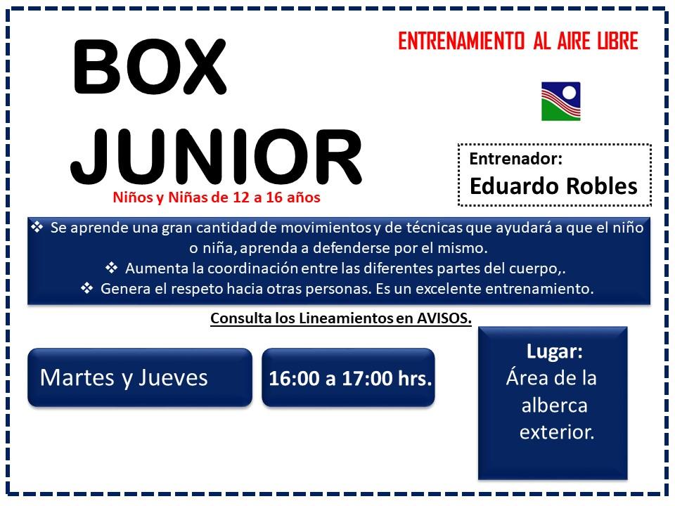 BOX JUNIOR